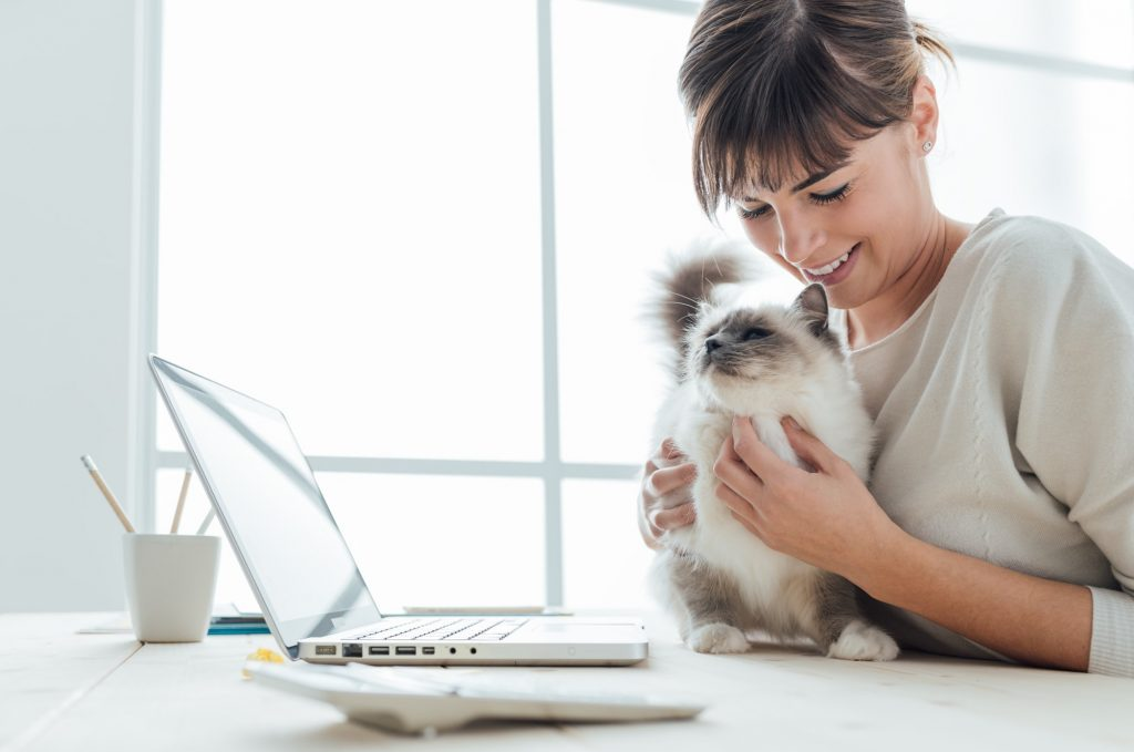 woman on laptop with kitty cat